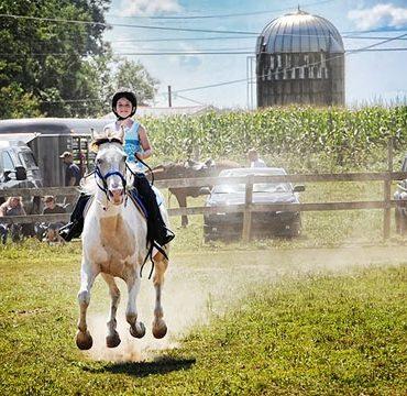 Урок верховой езды на лошадях